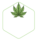 Just Jane - Oklahoma Cannabis Cultivation